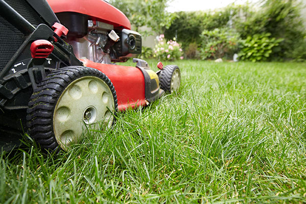 property preservation lawn care